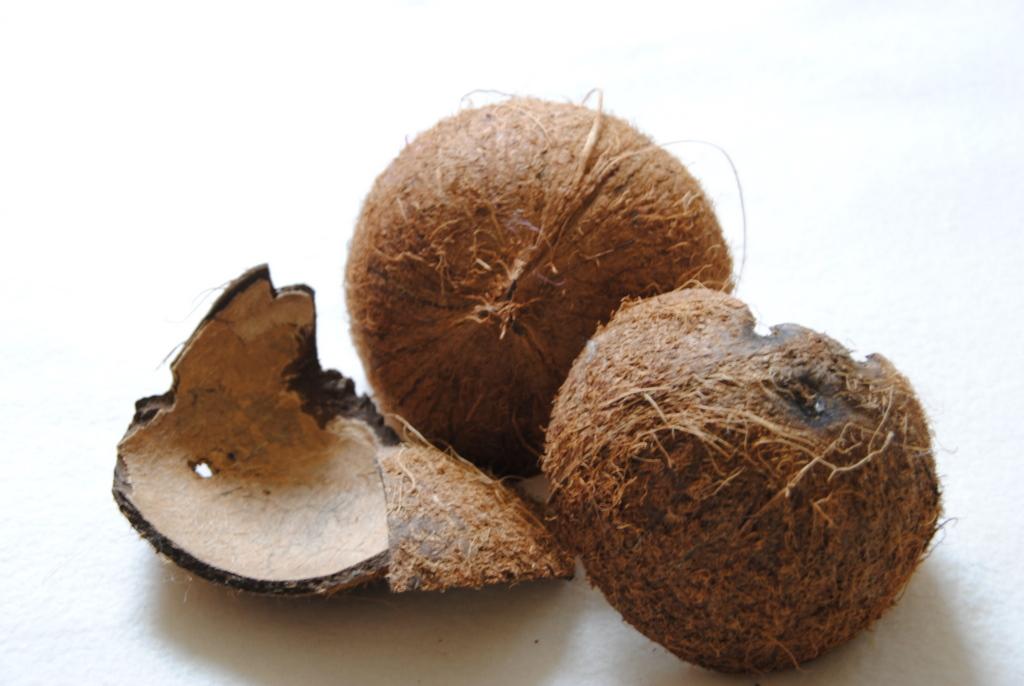 Kokosnussschalen ohne Fasern
