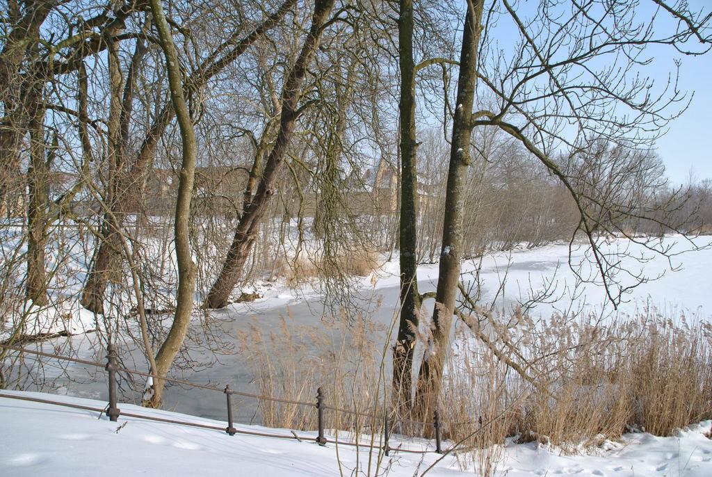 Winter in Schleswig