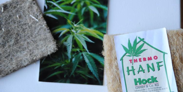 Hanfdämmstoff (www.thermo-hanf.de)und Foto einer Hanfpflanze