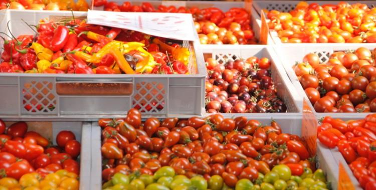 Tomaten in vielen Formen und Farben