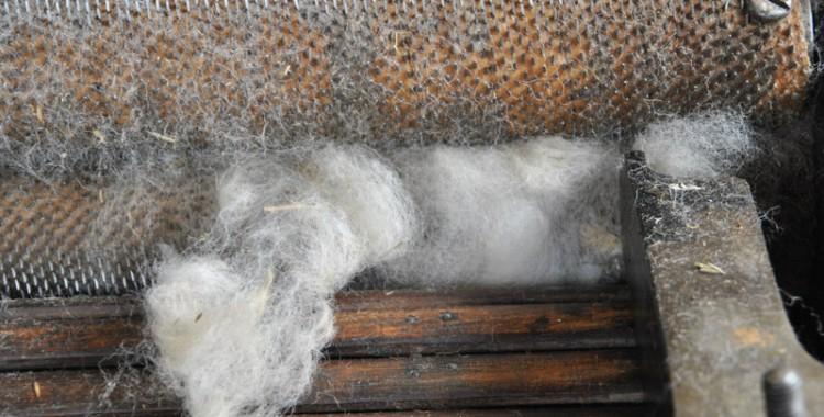 Walzen einer Kadiermaschine in Goltorf