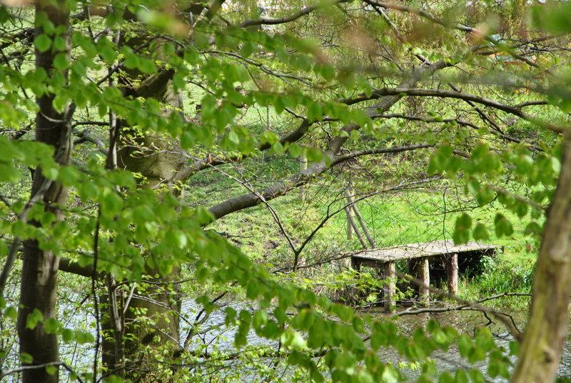 Frühling in Schleswig