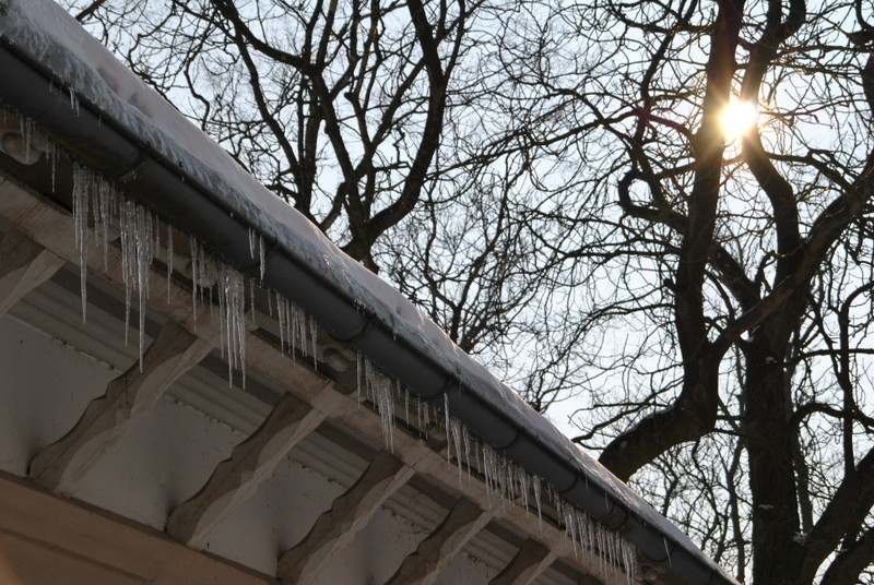 Winter 2010, Schleswig am Schloß