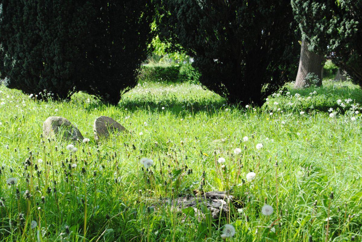 Alte Grabsteine auf dem Stadtfelder Friedhof in Schleswig