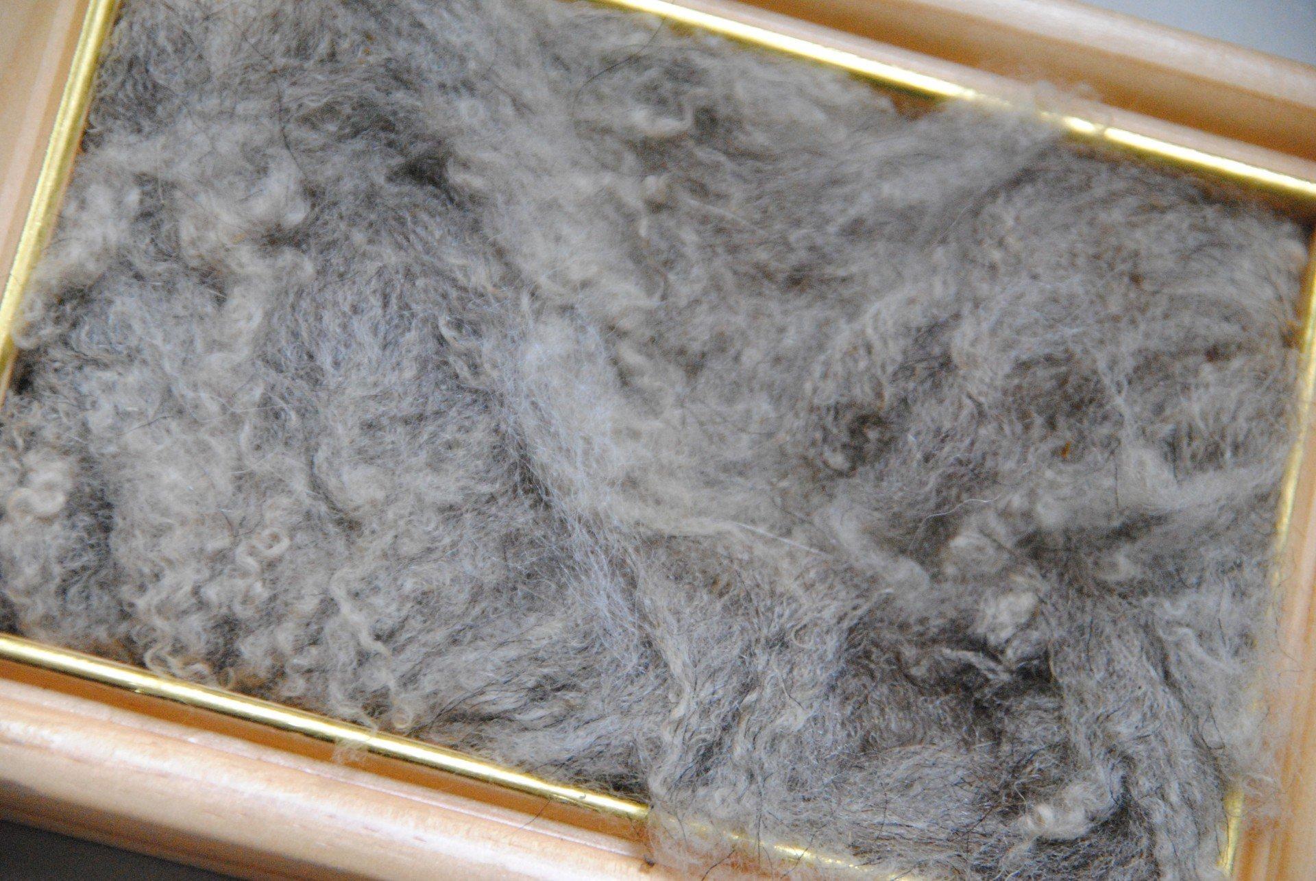 Romanow Wolle