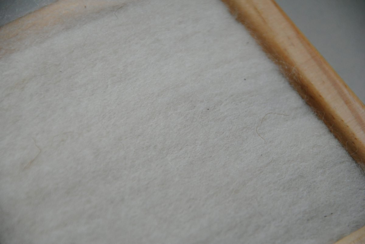 La Plata Wolle