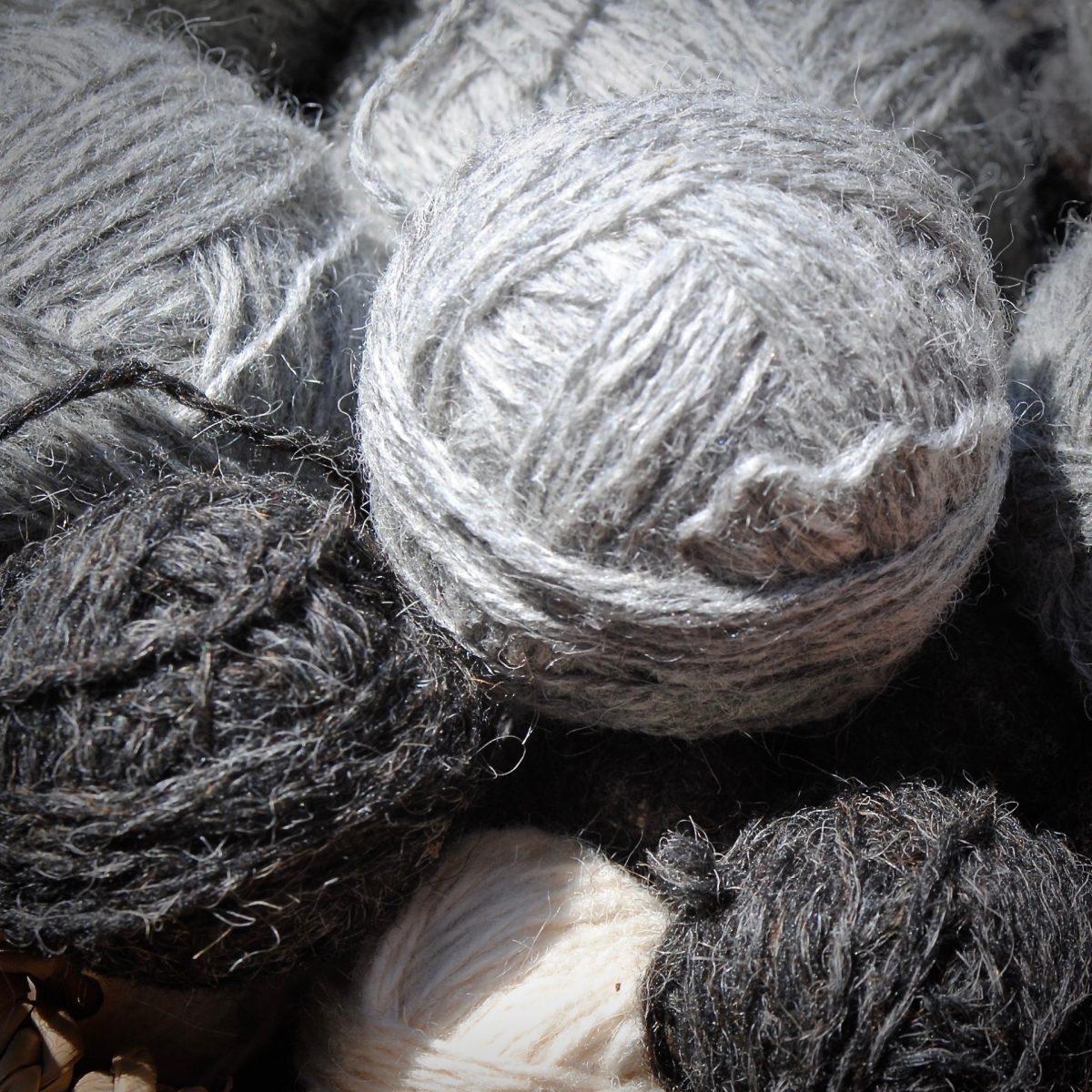 Wolle von Heidschnucken